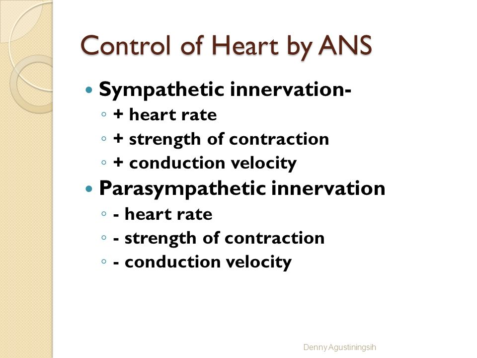 Control of Heart by ANS Sympathetic innervation-
