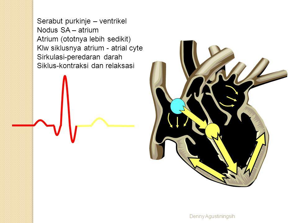 R T P Q S Serabut purkinje – ventrikel Nodus SA – atrium