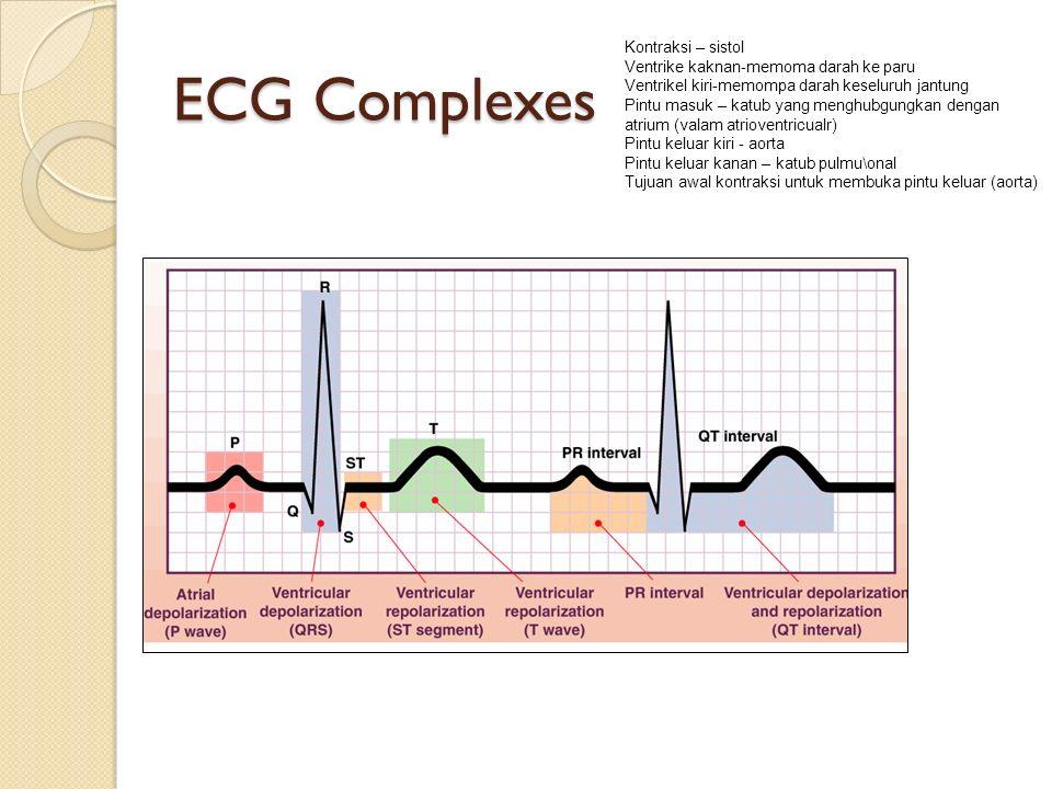 ECG Complexes Kontraksi – sistol Ventrike kaknan-memoma darah ke paru