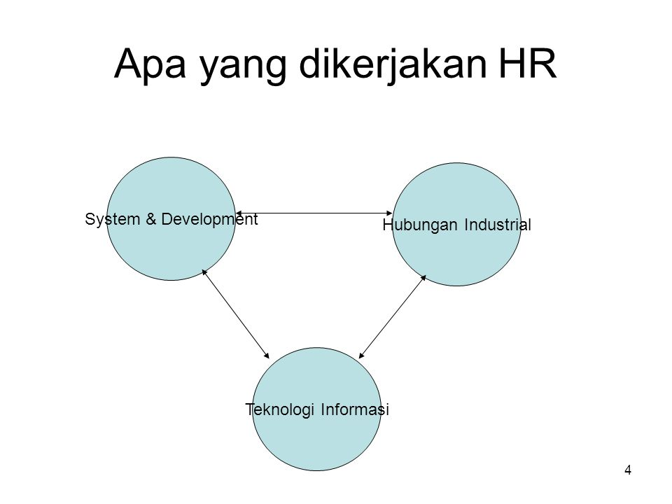 Apa yang dikerjakan HR System & Development Hubungan Industrial