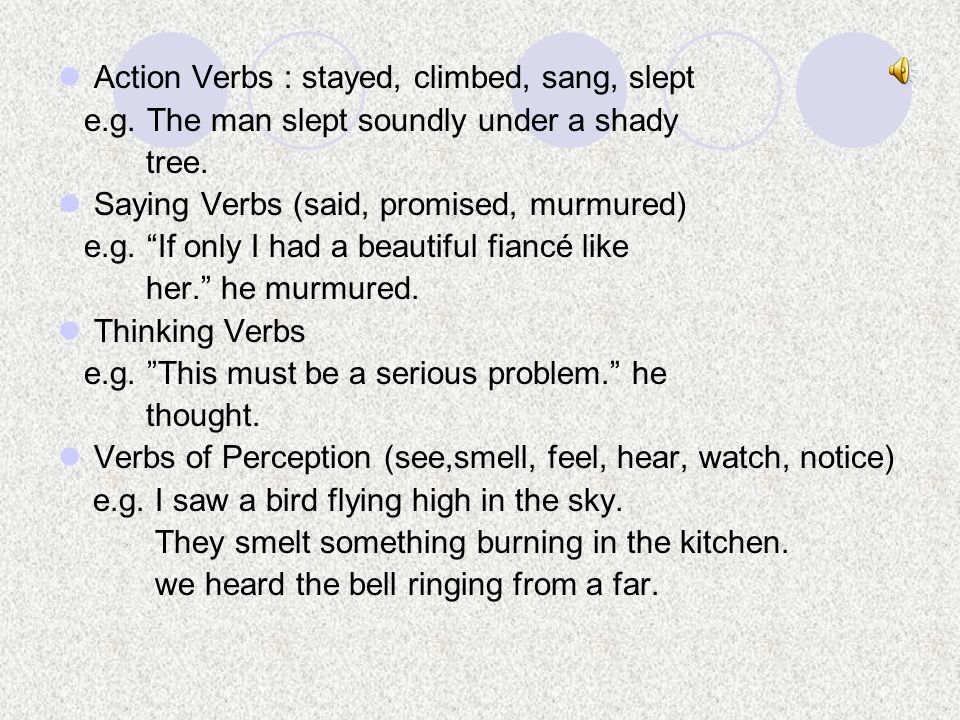 Action Verbs : stayed, climbed, sang, slept