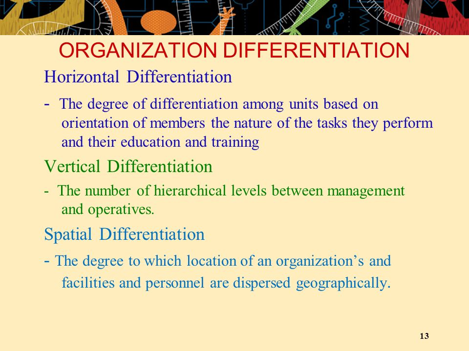 ORGANIZATION DIFFERENTIATION