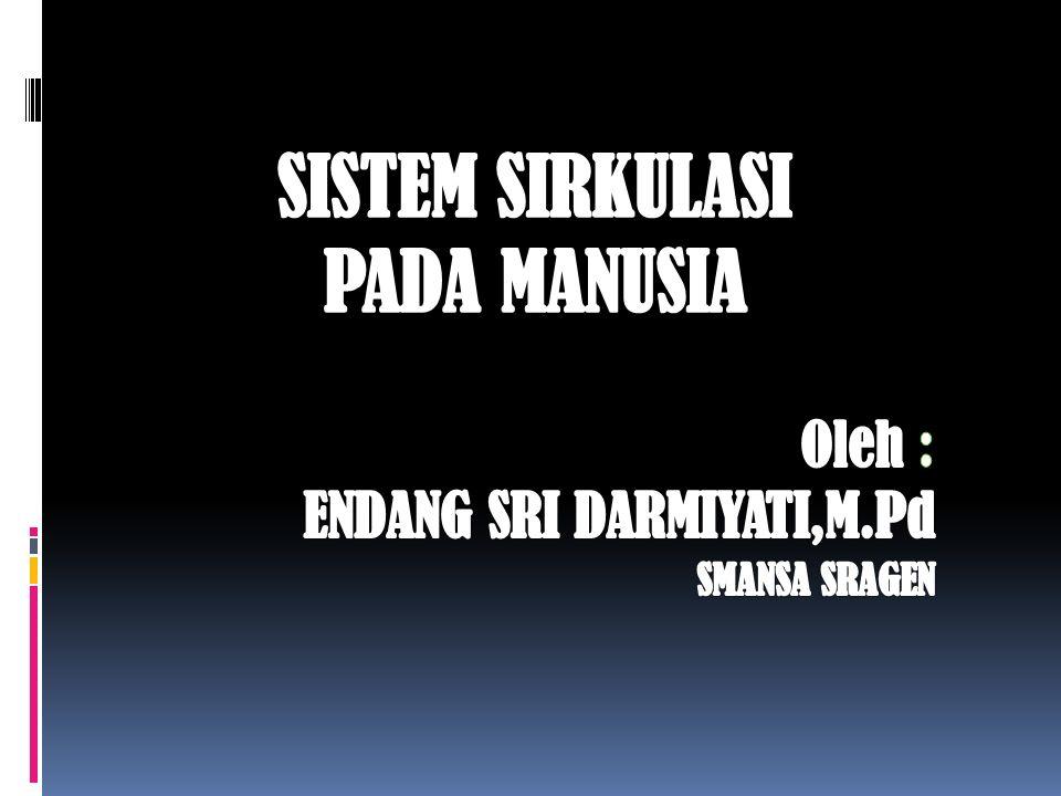 SISTEM SIRKULASI PADA MANUSIA Oleh : ENDANG SRI DARMIYATI,M.Pd