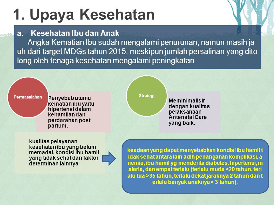 1. Upaya Kesehatan Kesehatan Ibu dan Anak