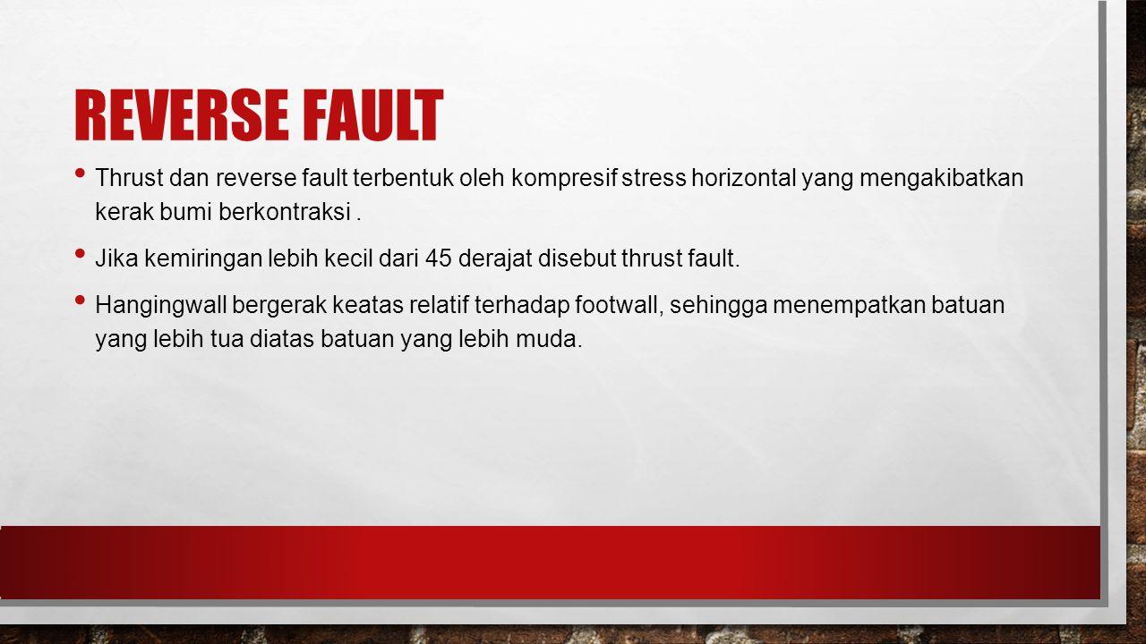 REVERSE FAULT Thrust dan reverse fault terbentuk oleh kompresif stress horizontal yang mengakibatkan kerak bumi berkontraksi .