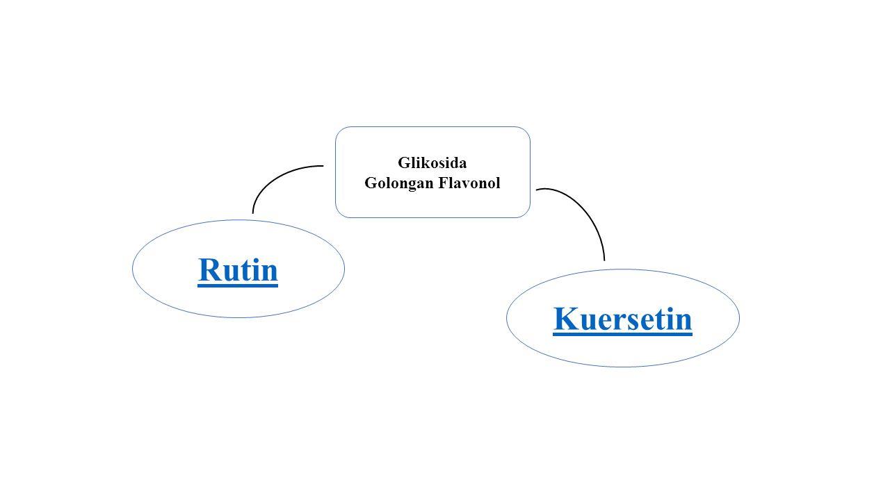 Glikosida Golongan Flavonol Rutin Kuersetin