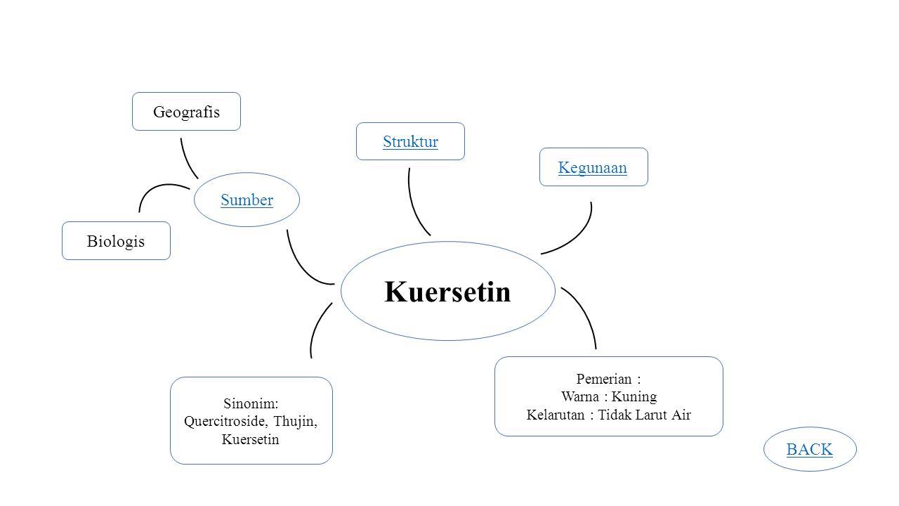 Kuersetin Geografis Struktur Kegunaan Sumber Biologis BACK Pemerian :