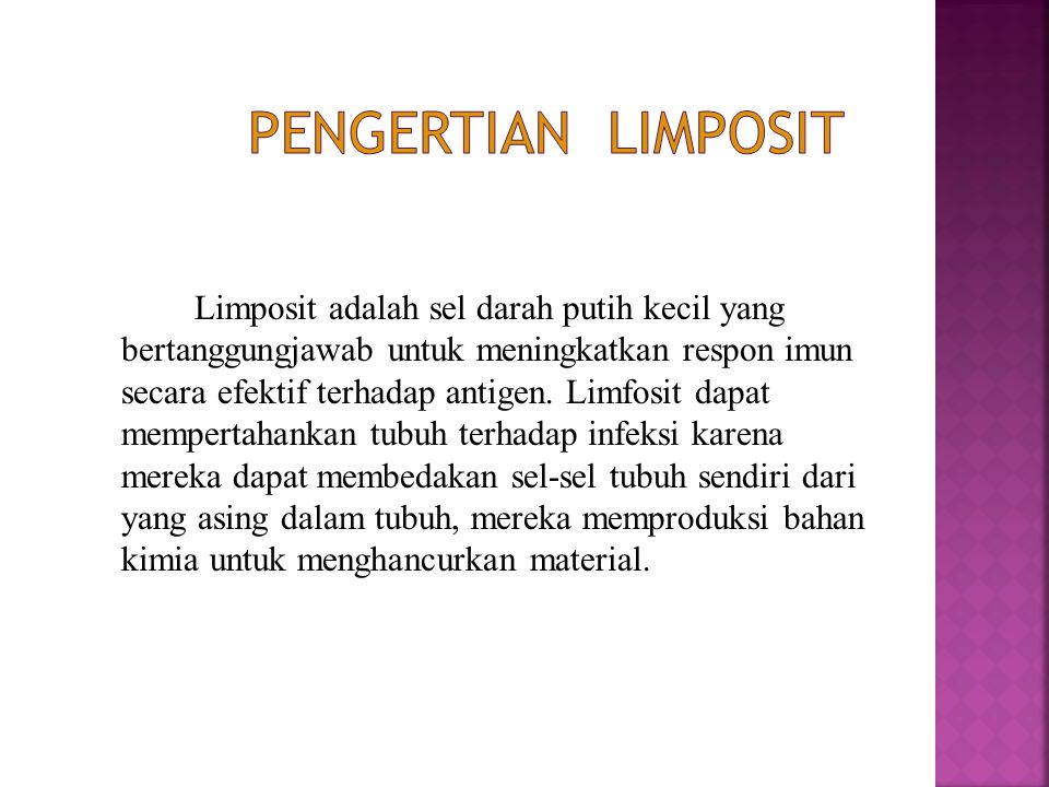 PENGERTIAN LIMPOSIT