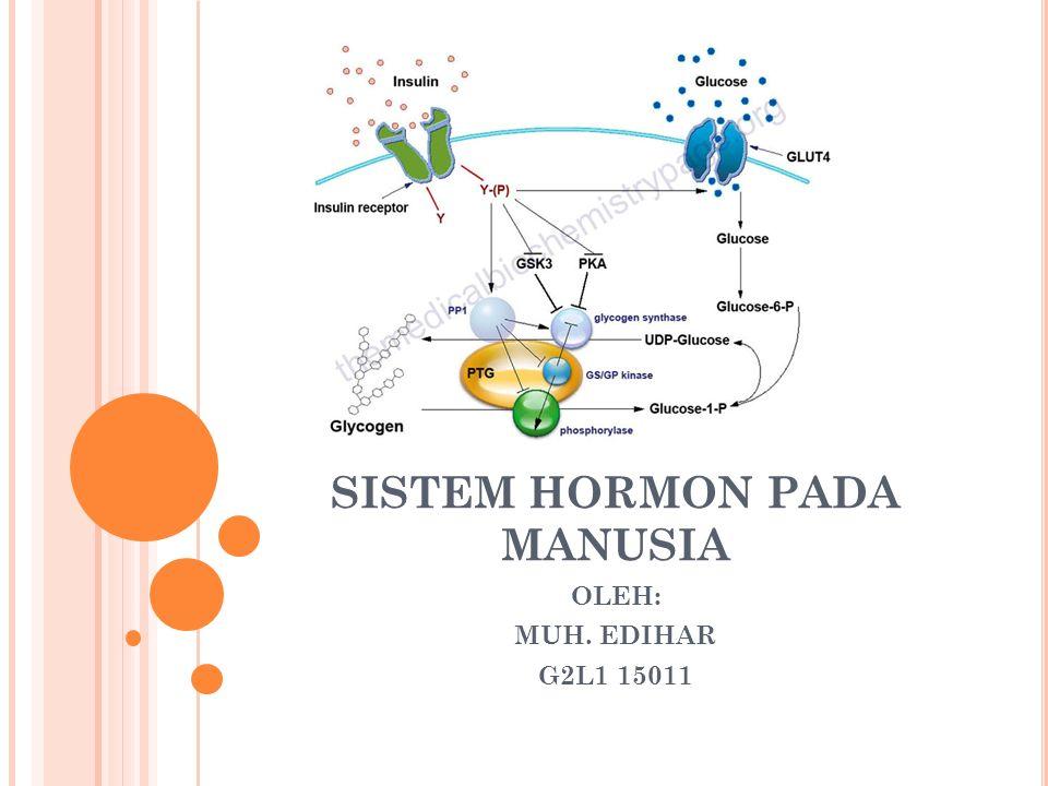SISTEM HORMON PADA MANUSIA