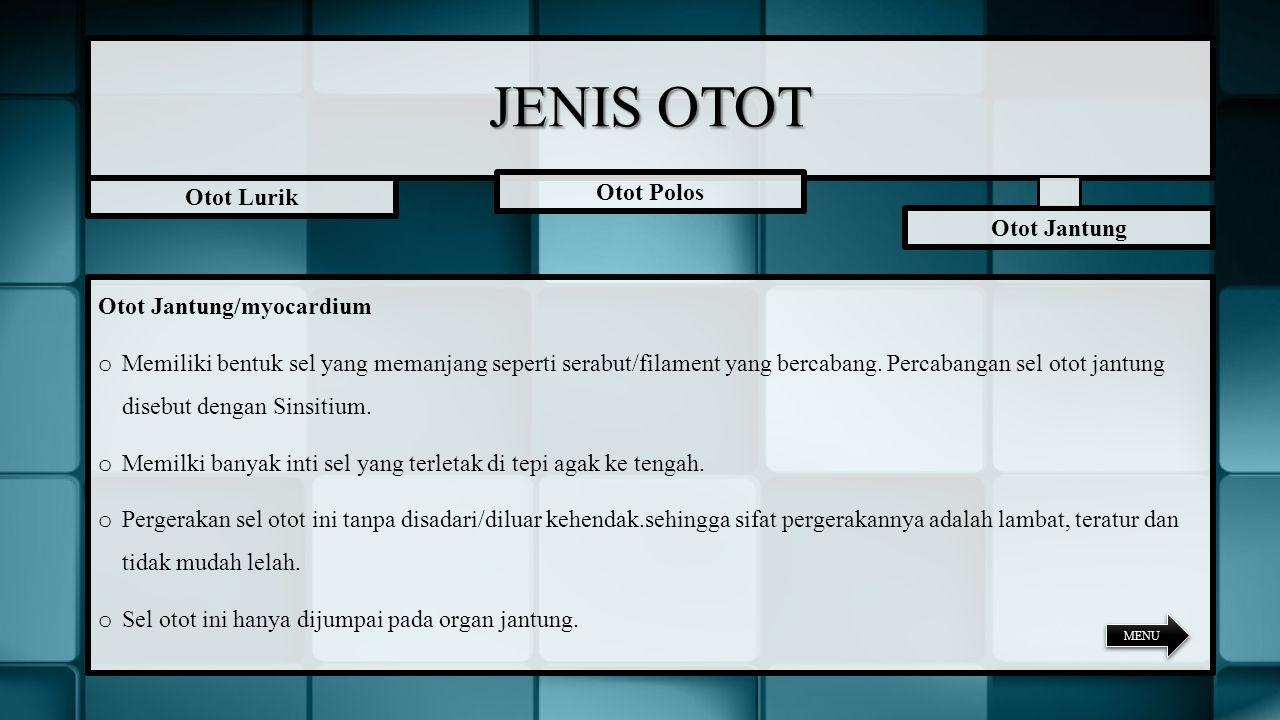 JENIS OTOT Otot Polos Otot Lurik Otot Jantung Otot Jantung/myocardium