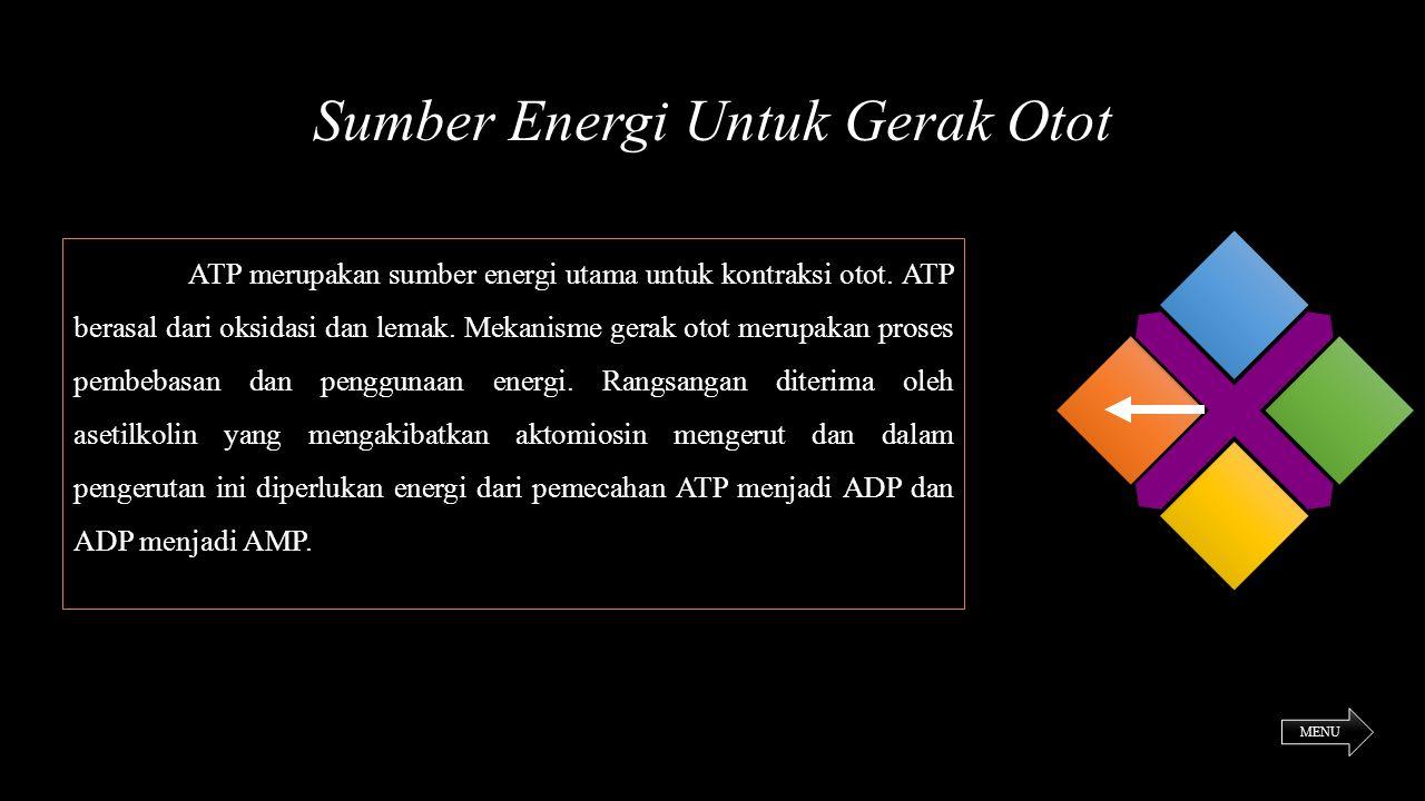 Sumber Energi Untuk Gerak Otot