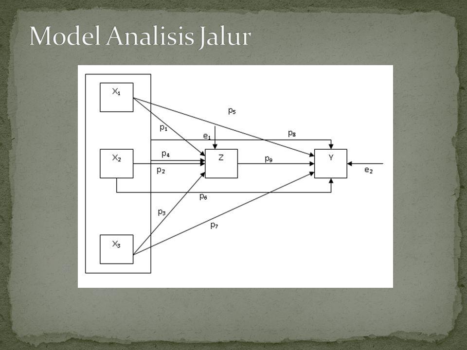 Model Analisis Jalur