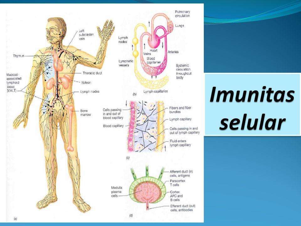 Imunitas selular
