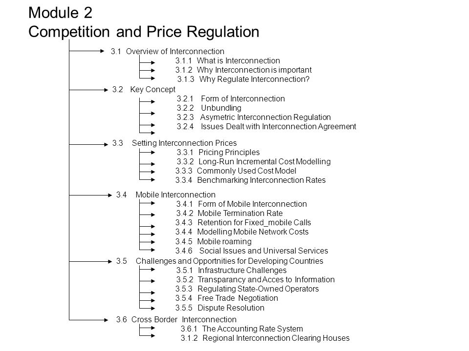 Module 2 Competition and Price Regulation