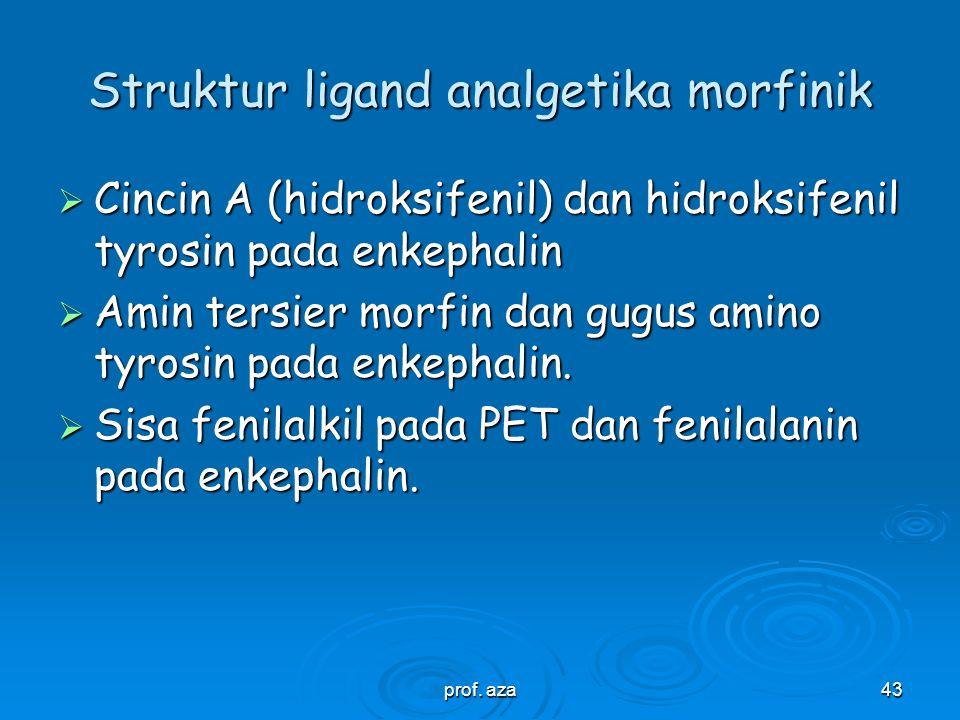 Struktur ligand analgetika morfinik
