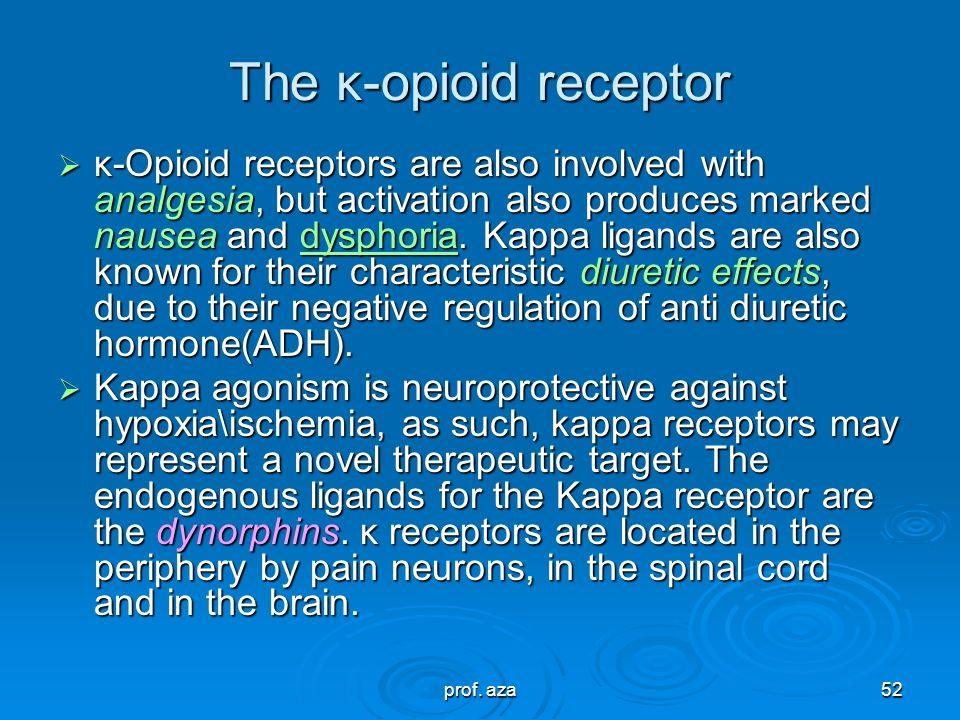 The κ-opioid receptor