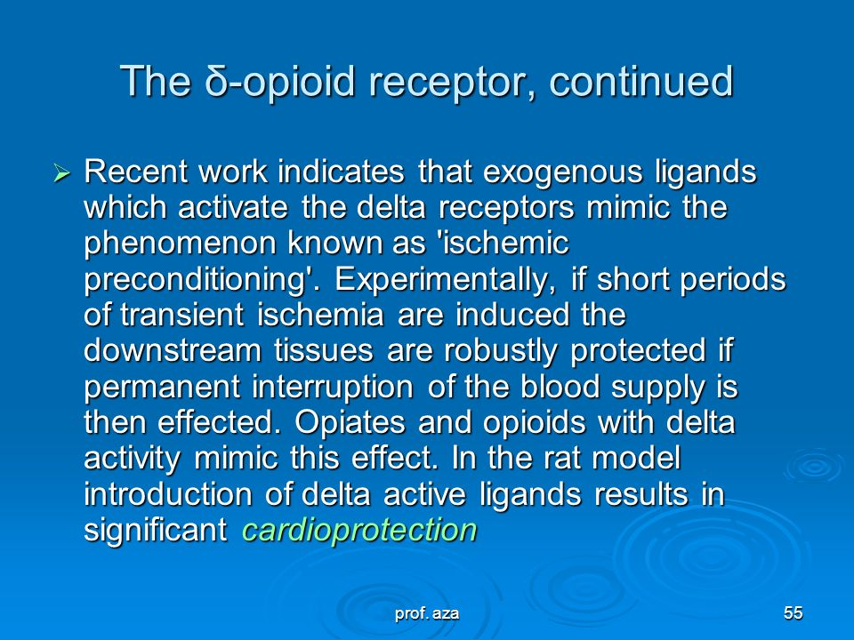 The δ-opioid receptor, continued