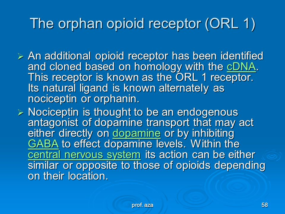 The orphan opioid receptor (ORL 1)