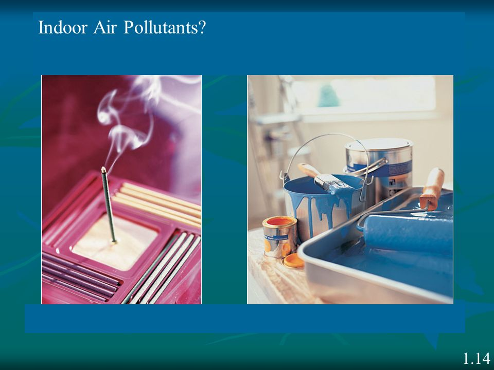 Indoor Air Pollutants 1.14