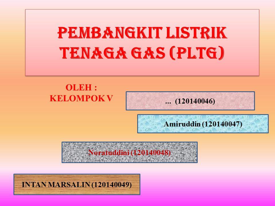Pembangkit Listrik Tenaga Gas (PLTG)