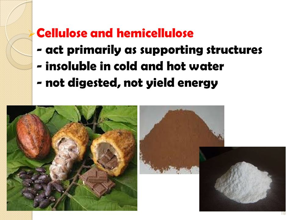 Cellulose and hemicellulose