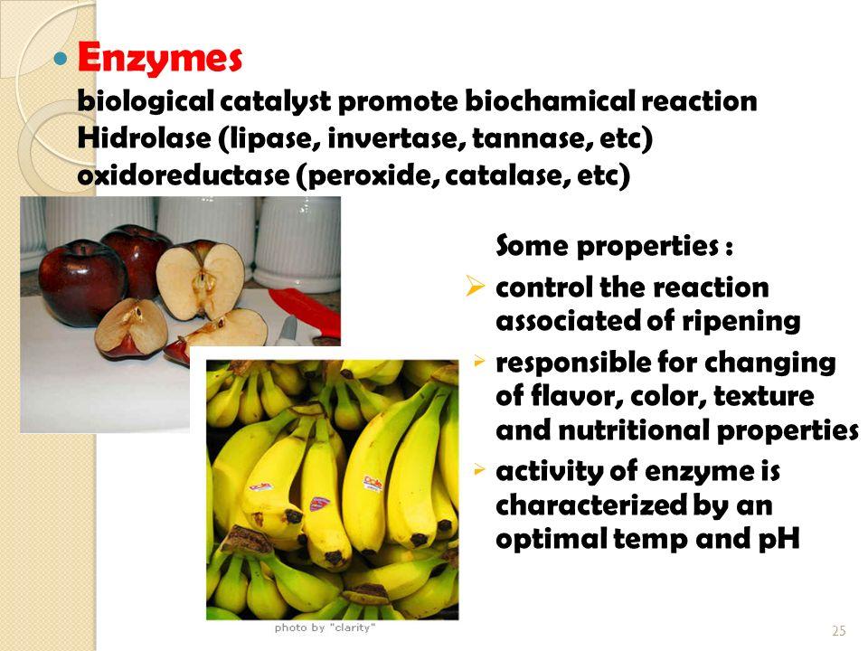 Enzymes Hidrolase (lipase, invertase, tannase, etc)
