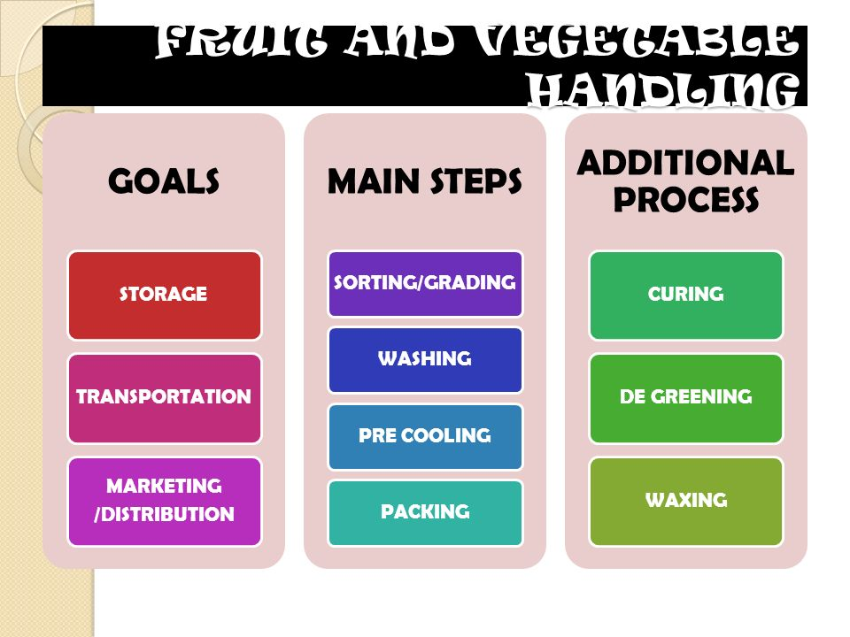 FRUIT AND VEGETABLE HANDLING