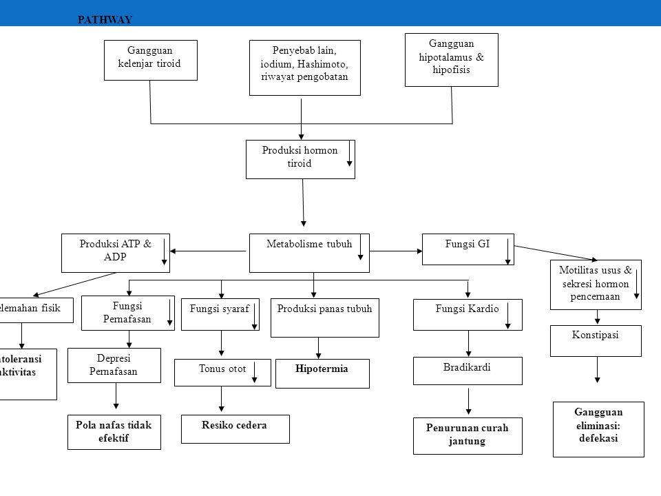 Gangguan hipotalamus & hipofisis
