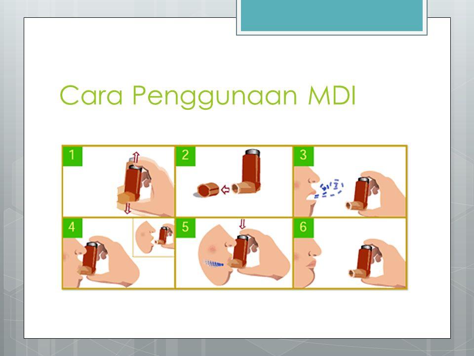 Cara Penggunaan MDI