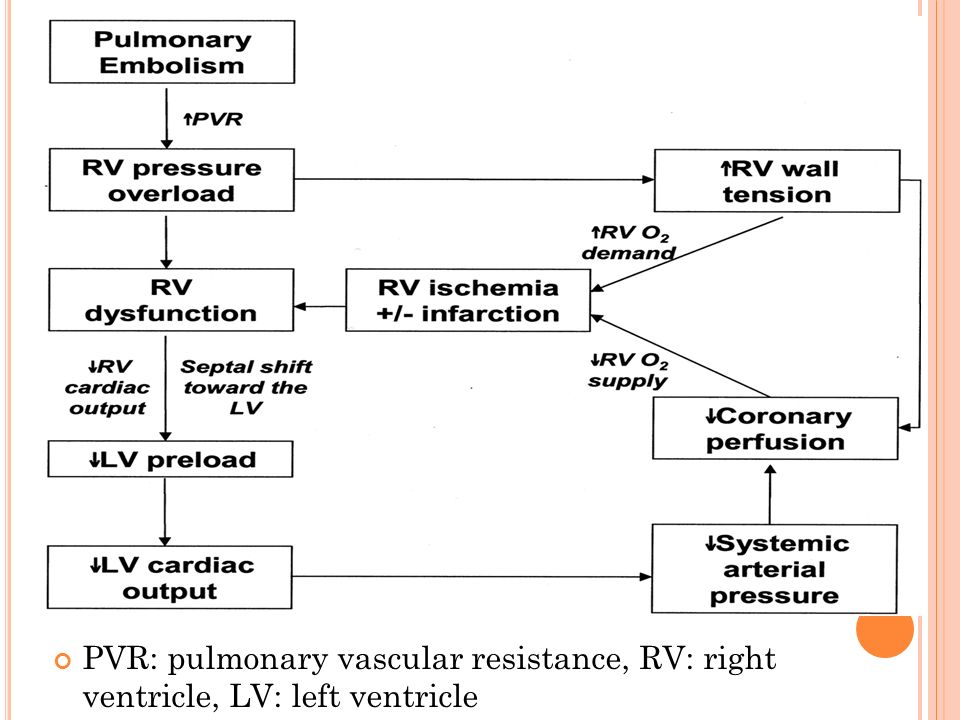 PVR: pulmonary vascular resistance, RV: right ventricle, LV: left ventricle