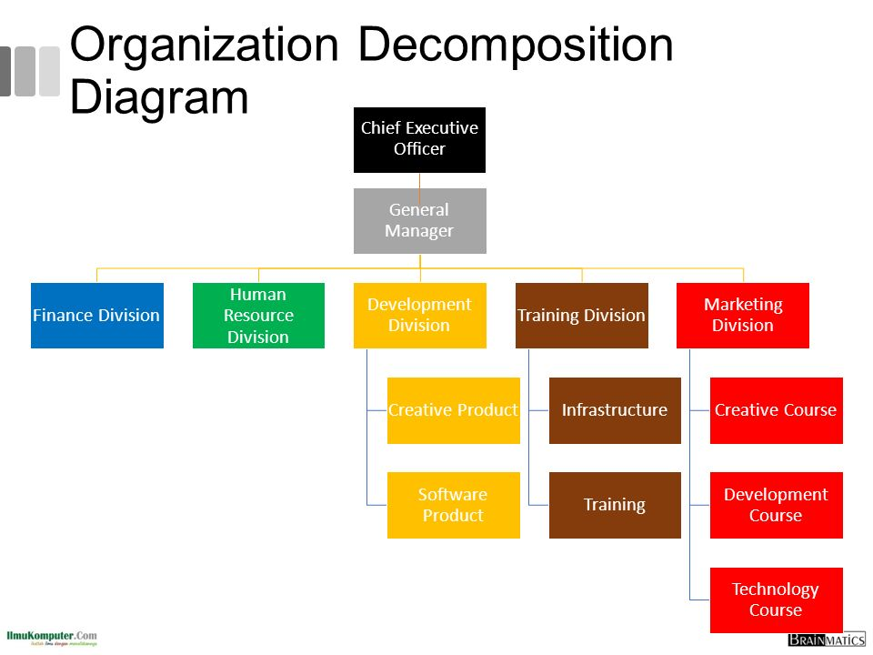 Organization Decomposition Diagram