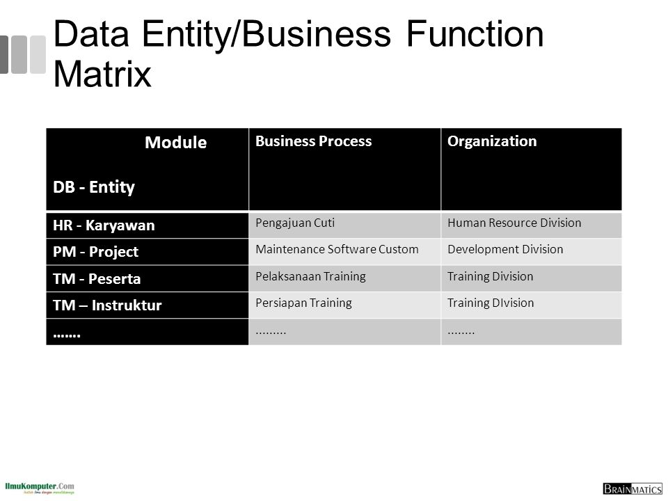 Data Entity/Business Function Matrix