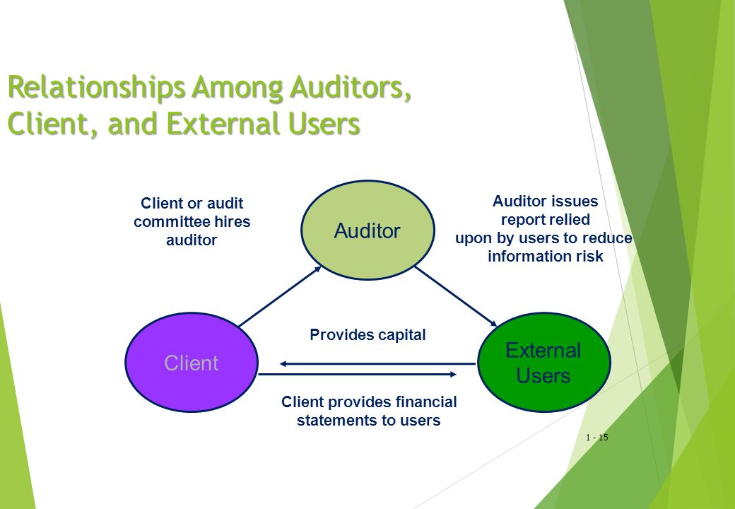 Relationships Among Auditors, Client, and External Users