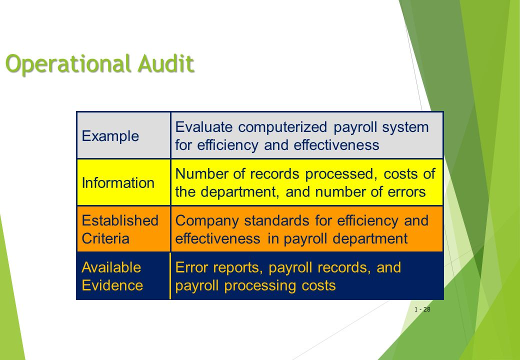 Operational Audit Example Evaluate computerized payroll system