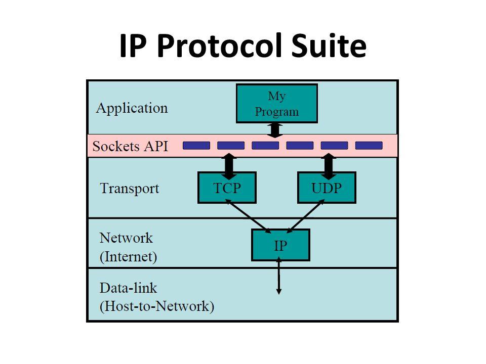 IP Protocol Suite