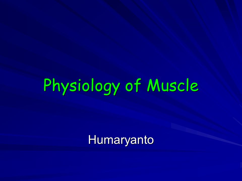 Physiology of Muscle Humaryanto