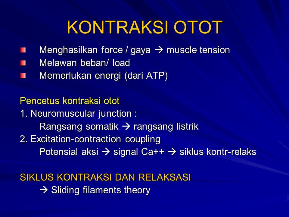 KONTRAKSI OTOT Menghasilkan force / gaya  muscle tension