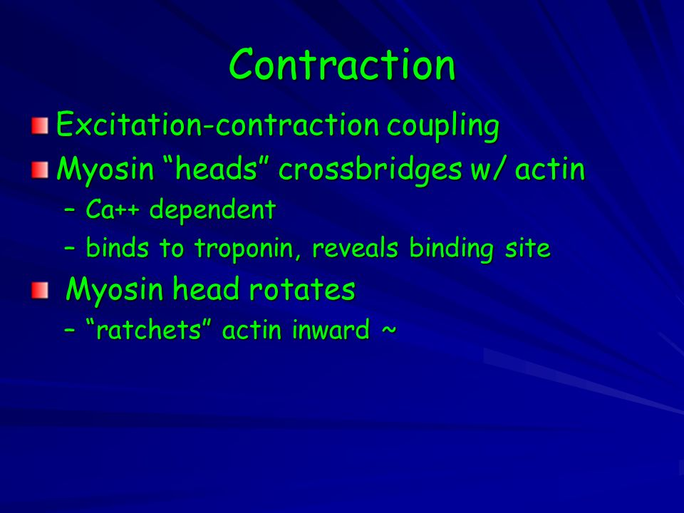 Contraction Excitation-contraction coupling