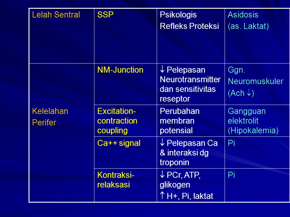 Lelah Sentral SSP. Psikologis. Refleks Proteksi. Asidosis. (as. Laktat) NM-Junction.  Pelepasan Neurotransmitter dan sensitivitas reseptor.
