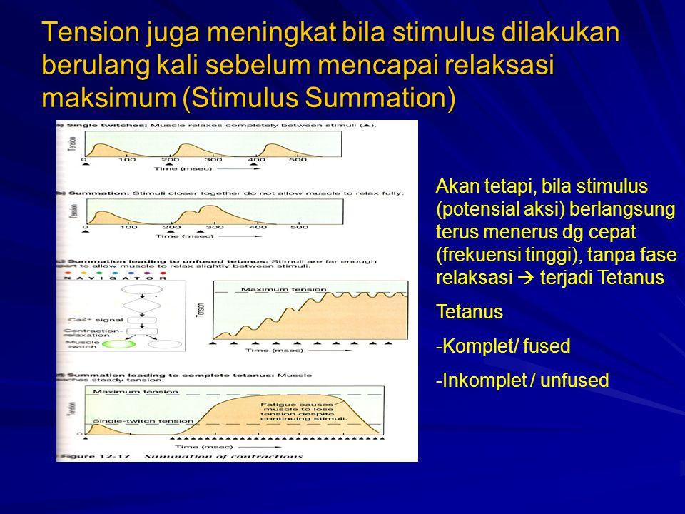 Tension juga meningkat bila stimulus dilakukan berulang kali sebelum mencapai relaksasi maksimum (Stimulus Summation)