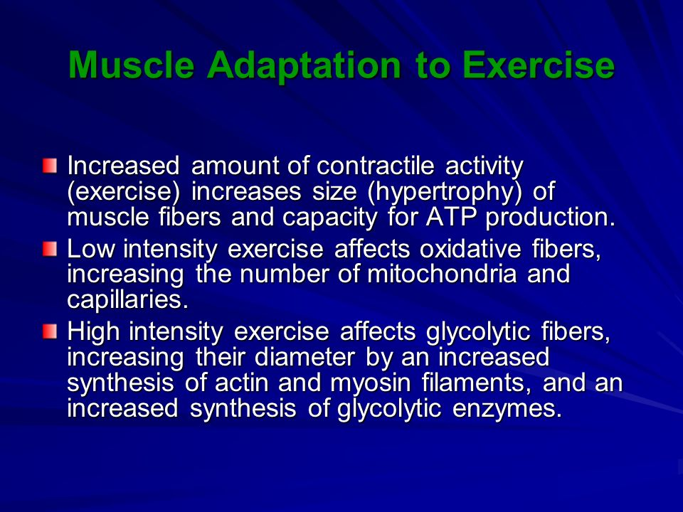 Muscle Adaptation to Exercise