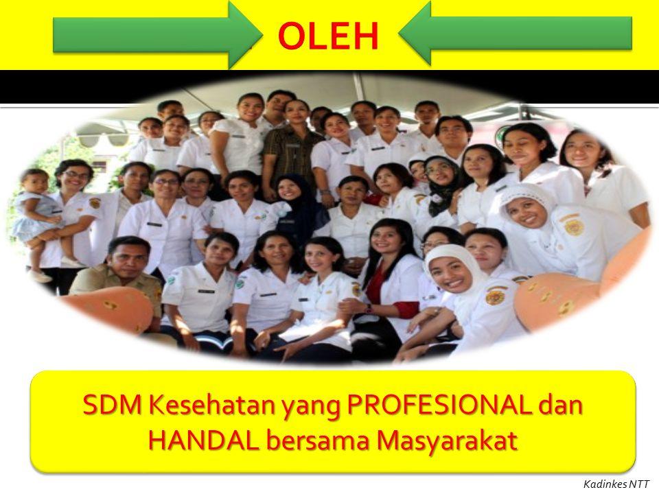 SDM Kesehatan yang PROFESIONAL dan HANDAL bersama Masyarakat