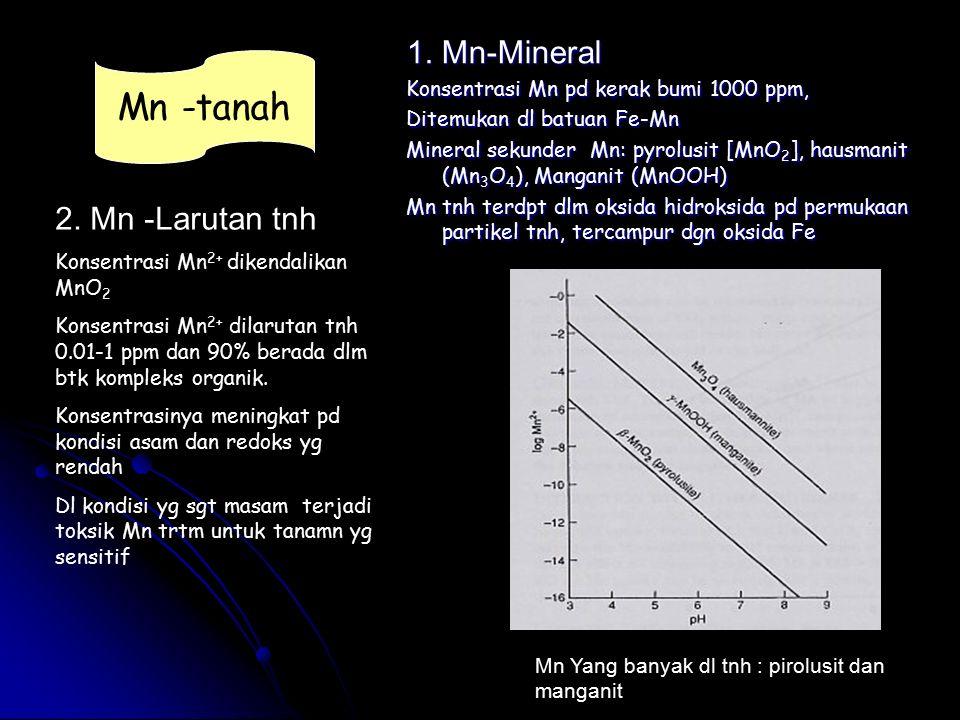 Mn -tanah 1. Mn-Mineral 2. Mn -Larutan tnh