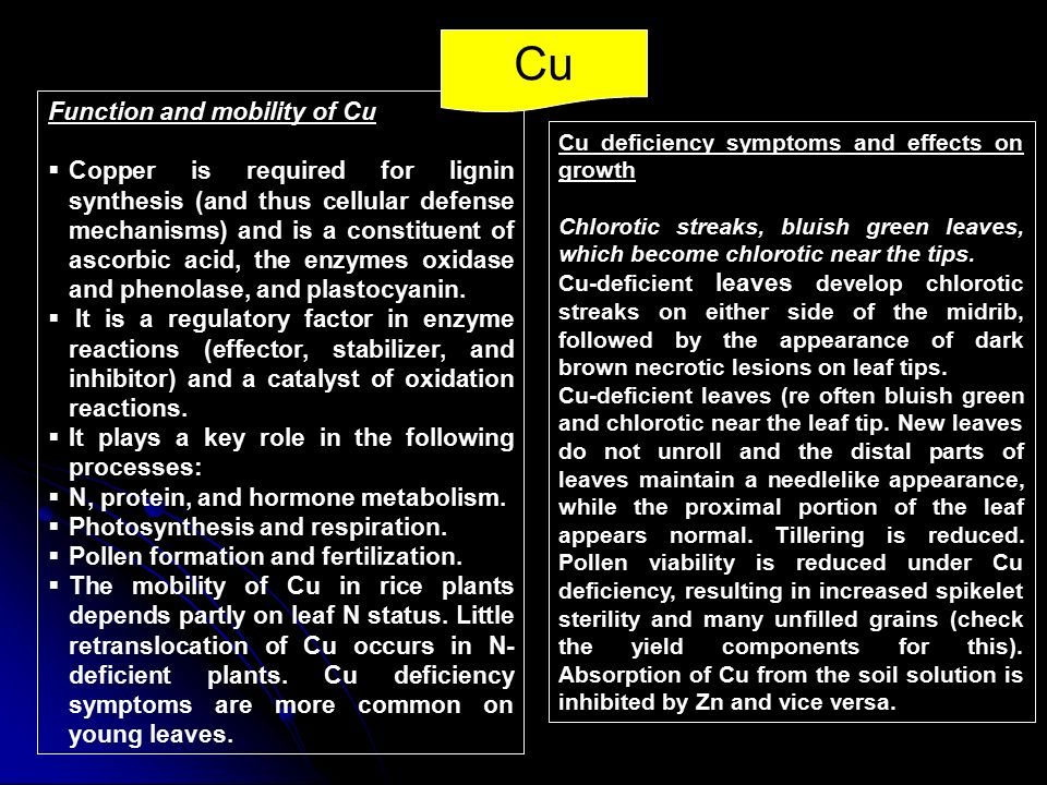 Cu Function and mobility of Cu