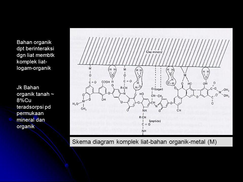 Skema diagram komplek liat-bahan organik-metal (M)