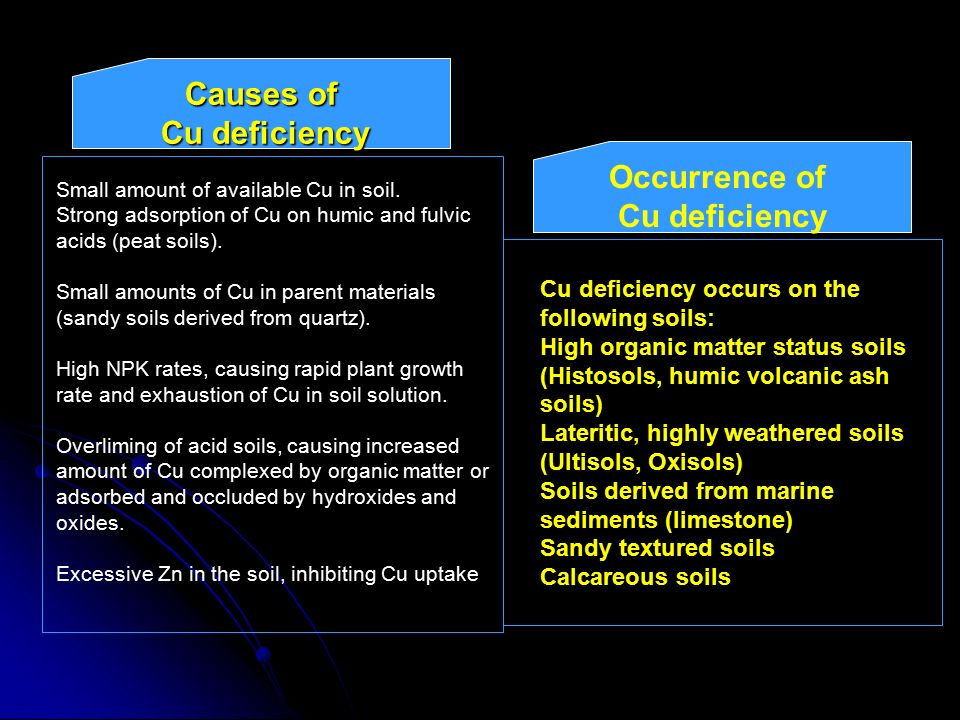 Causes of Cu deficiency Occurrence of Cu deficiency