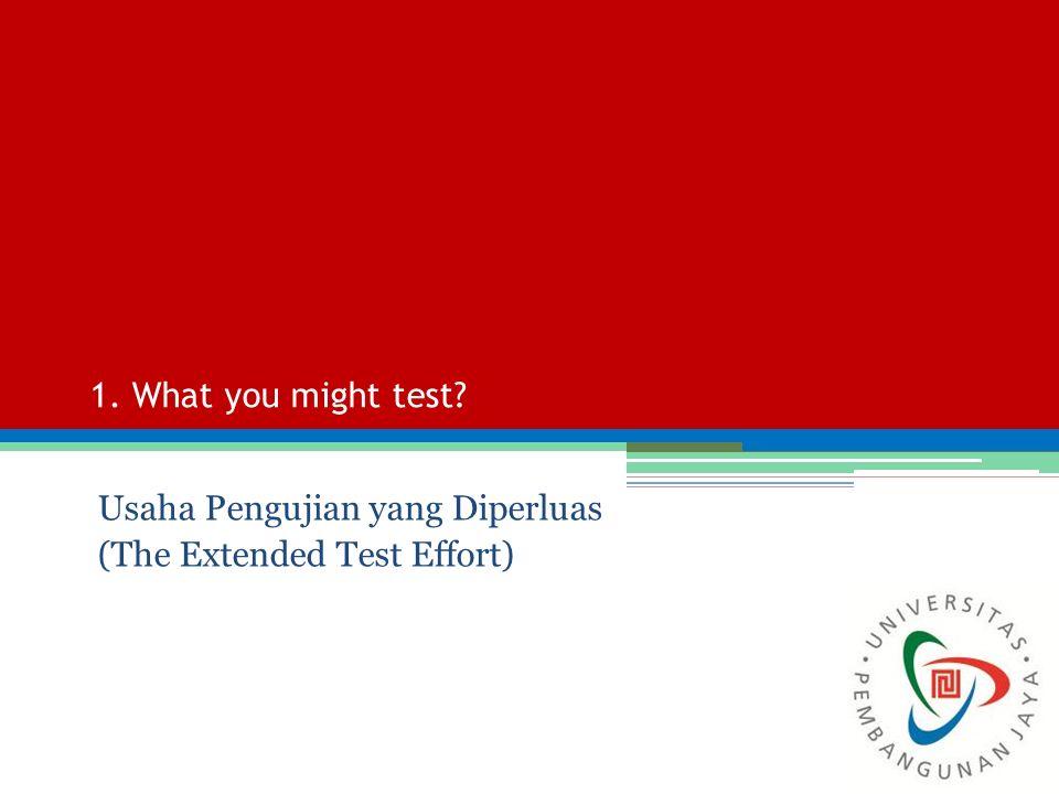 Usaha Pengujian yang Diperluas (The Extended Test Effort)