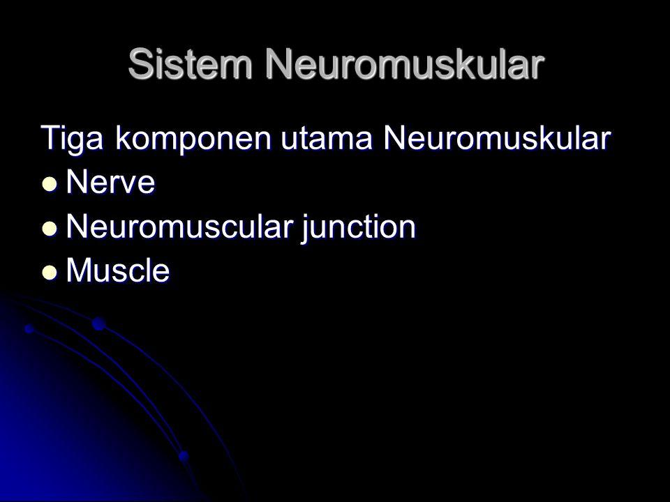 Sistem Neuromuskular Tiga komponen utama Neuromuskular Nerve