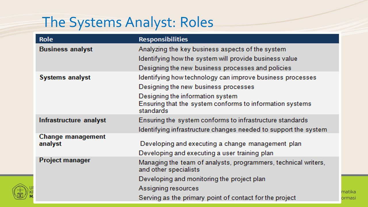 The Systems Analyst: Roles