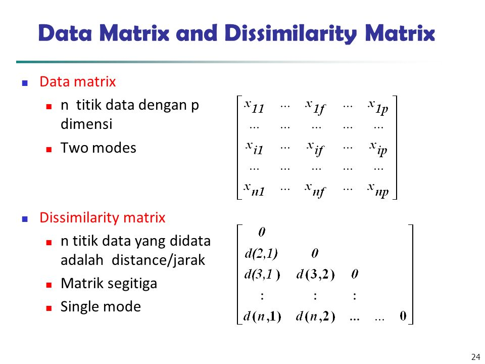 Data Matrix and Dissimilarity Matrix